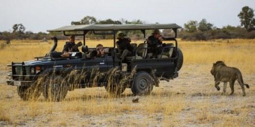 Hotel-Mobile-Safari-Fotoreise-Botswana-Wildlife