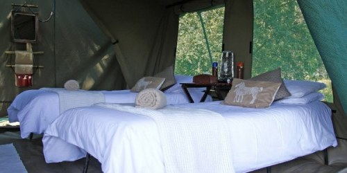 Hotel-Mobile-Safari-Zelt-Fotoreise-Botswana-Wildlife