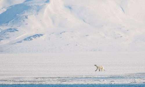 Kundengalerie-Dorina-Svalbard-07