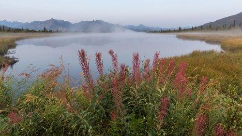 Fotogalerie-Kunden-Alaska-Erwin-Ramseier-02
