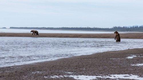 Fotogalerie-Kunden-Alaska-Erwin-Ramseier-05