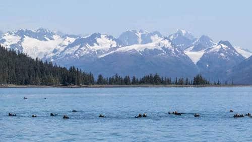 Fotogalerie-Kunden-Alaska-Erwin-Ramseier-11