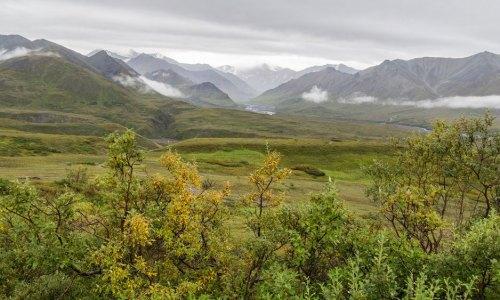 Fotogalerie-Kunden-Alaska-Erwin-Ramseier-18