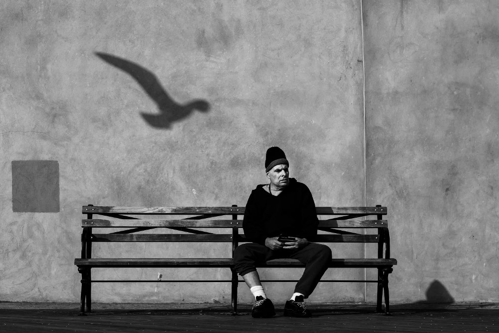 Portfolio Jens Krauer