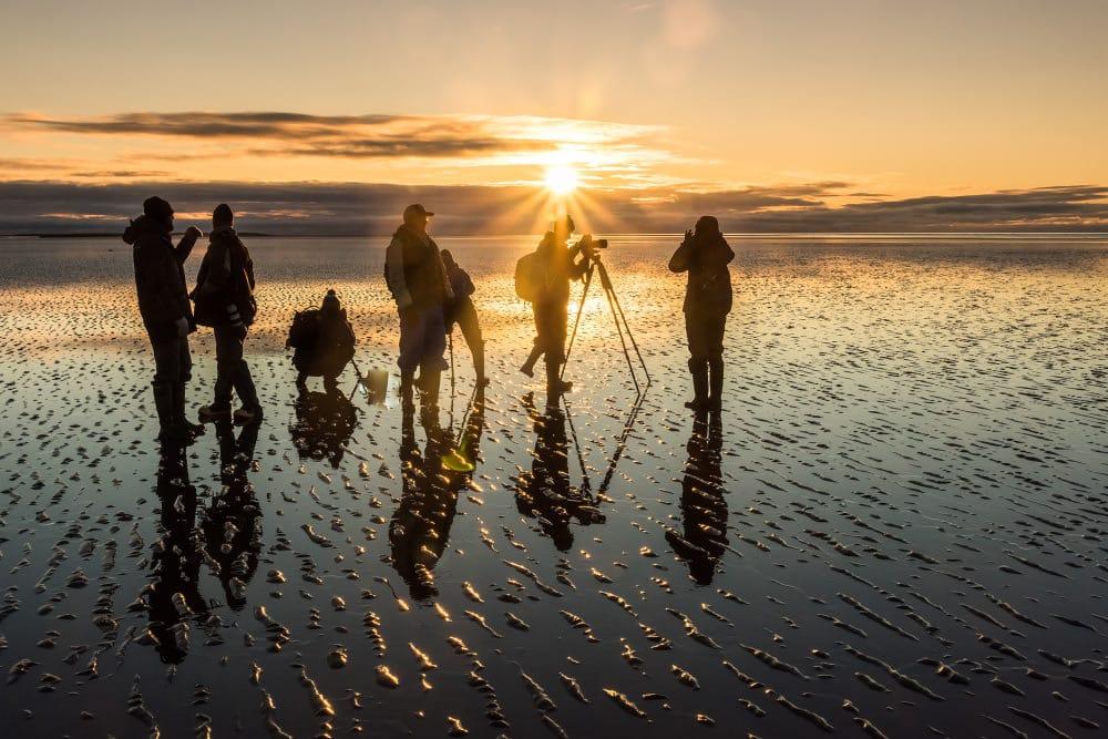 Fotoreise Alaska