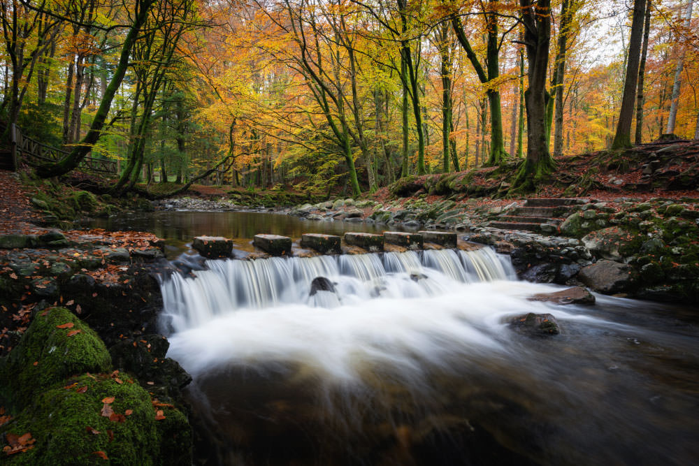 Fotoreise Wilder Herbst Irland