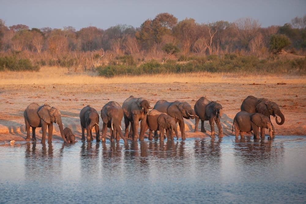 Fotoreise Unberührtes Afrika