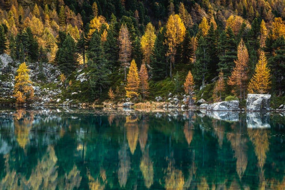Fotoworkshop Lago di Saoseo Herbst