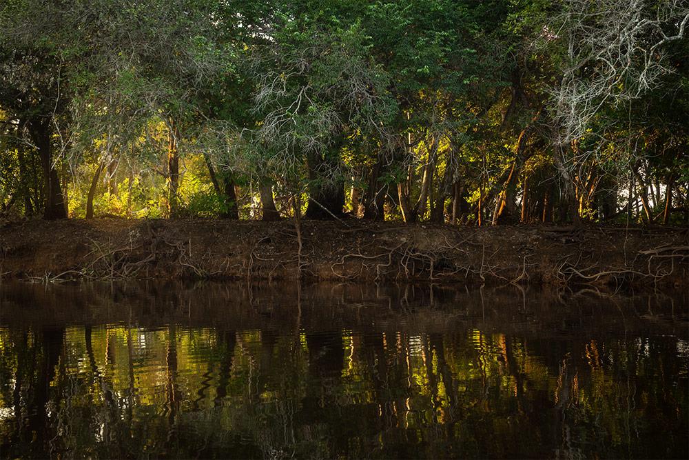 Reisebericht Fotoreise Pantanal