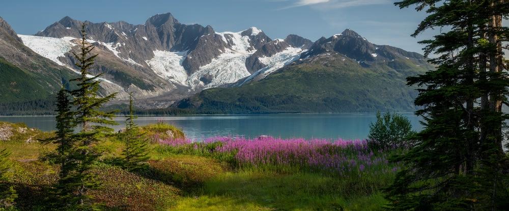 Banner Blog Reisebericht Alaska
