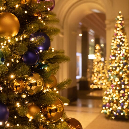 Fotoworkshop Weihnachtslichter