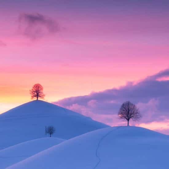 Fotoworkshop Magische Drumlins Winter