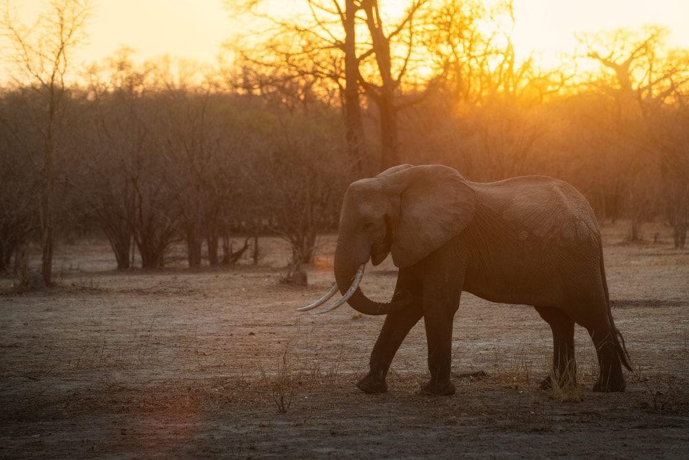 Fotoreise Sambia